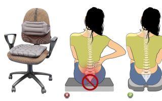 Ортопедическая подушка для кресла – польза или вред