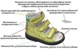 Как выбрать ортопедические ботинки для детей — советы экспертов