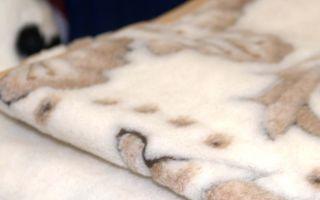 Как выбрать одеяло из овечьей шерсти: советы и отзывы покупателей