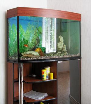 Делаем тумбу под аквариум своими руками: пошаговая инструкция